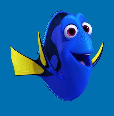 Nemo  Grupa 2017 Uważność Poniedziałek Nemo